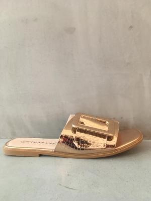 gouden slipper logo